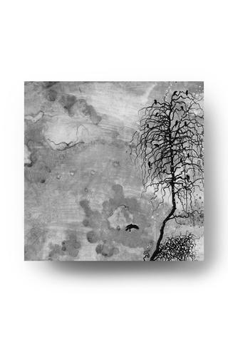 Beulah by John Paul White